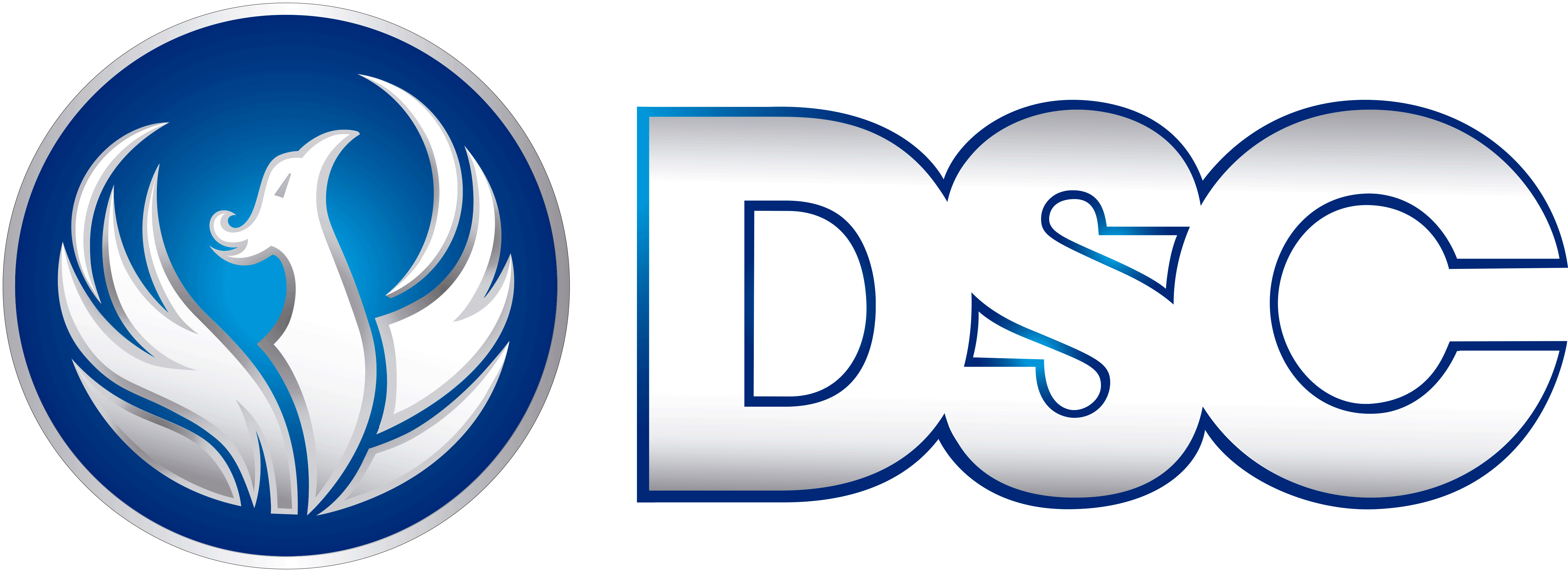 CERRAJEROS DSC